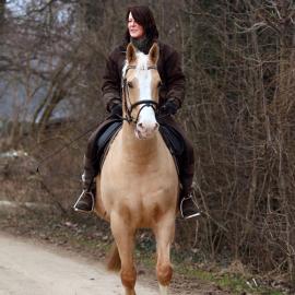 Nur das Beste für Ihr Pferd